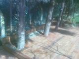 veranda-yapimi-4